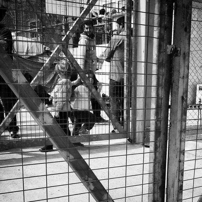 Barn bakom galler