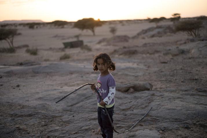 Sveket mot västsaharierna. Foto: Johan Persson
